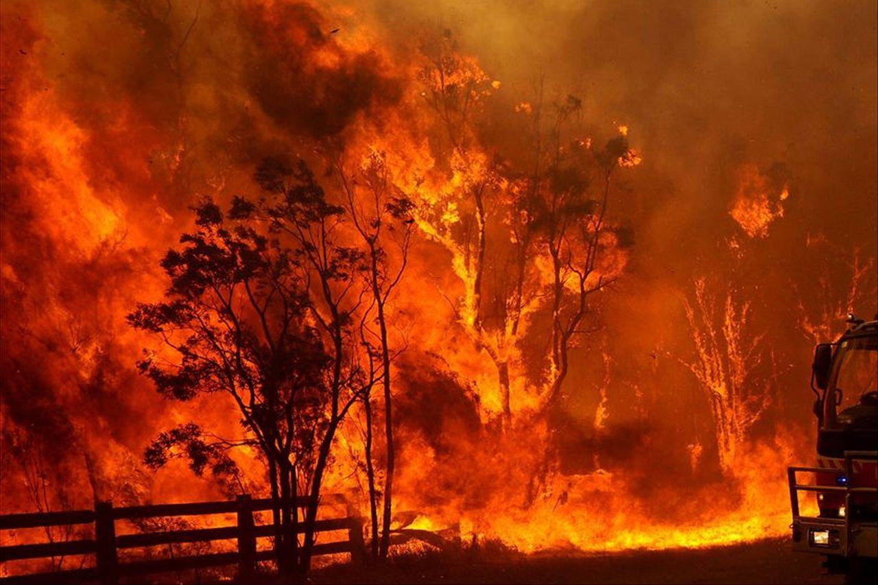 bushfire - photo #3